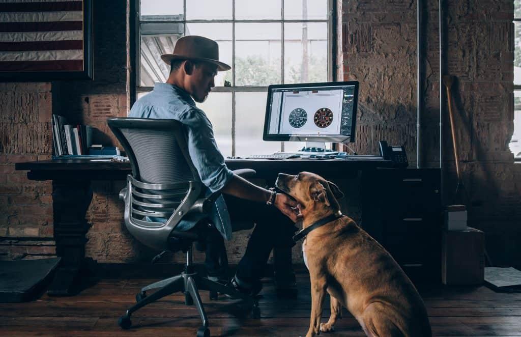 web designer with dog at desk